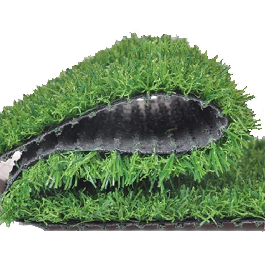酒悲しいどこかYNGJUEN 人工芝30ミリメートルパイル高品質安いリアルなナチュラルグリーン偽の芝生庭の装飾 (Size : 2x3m)
