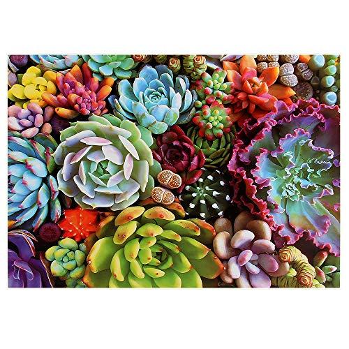 1000 Teile Puzzle für Erwachsene Kinder Sukkulenten Pflanzen Puzzle 1000 Teile Gradient Puzzle Schwierige und Herausforderung Bildung Stress Relief Spielzeug Puzzle (Sukkulenten)