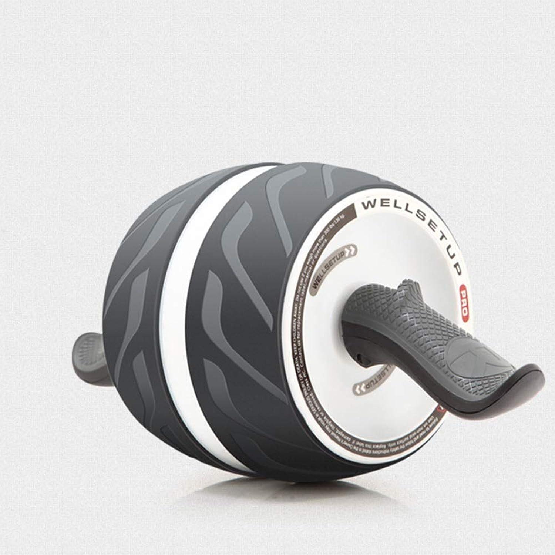 BLWX LY Perfect Fitness Ab Roller für Kernsportarten, Fitnessgerte für die Bauchmuskeltrainingseinheit, 3,1 lb, 400 mm x 160 mm x 190 mm