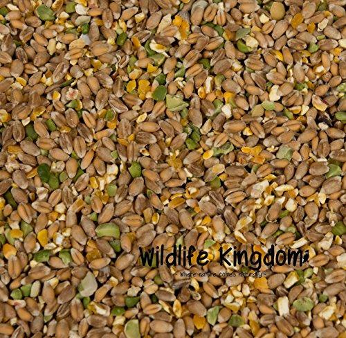 Wildlife Kingdom Mélange volaille très énergétique...