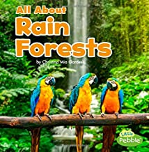 Best all about the rain Reviews
