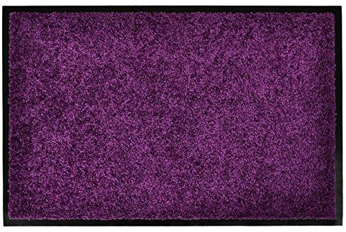 Schmutzfangmatte Wash & Clean Farbe: Purple, Größe: 60 cm B x 40 cm T