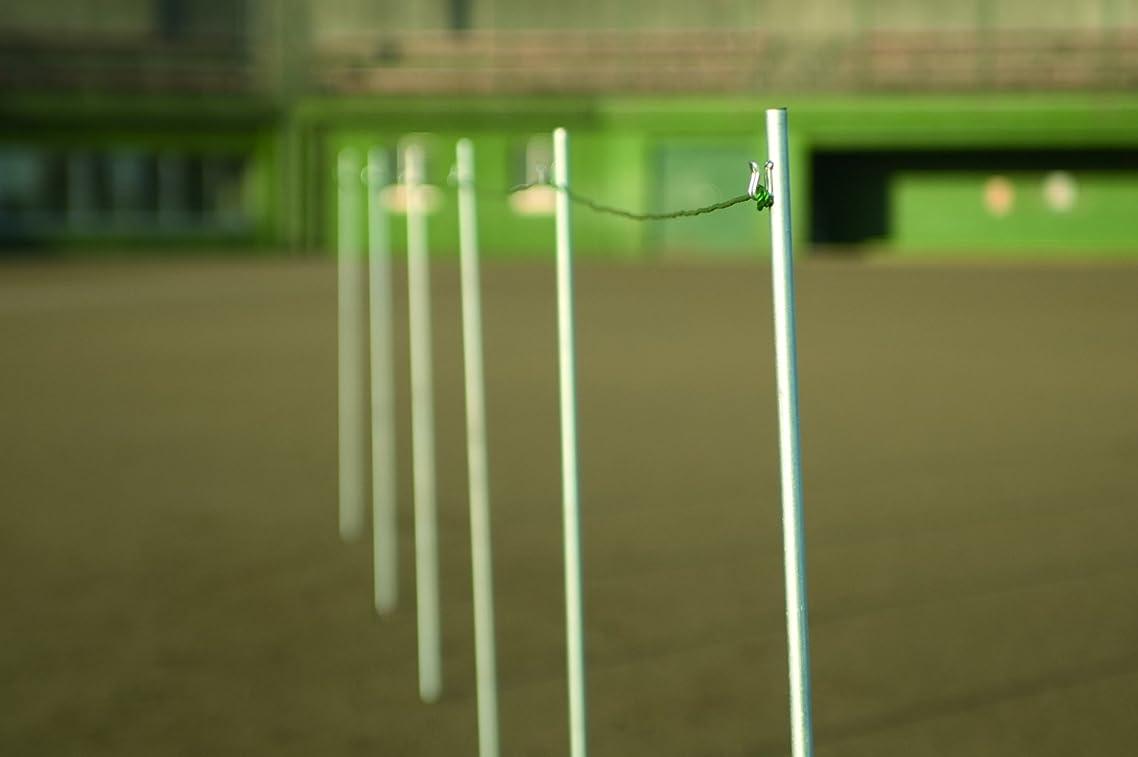 用語集災害後ロープフック付きクイ 1本 標識ロープコーナーロープ用 1000mm 太さ直径16mm  運動会 グランド