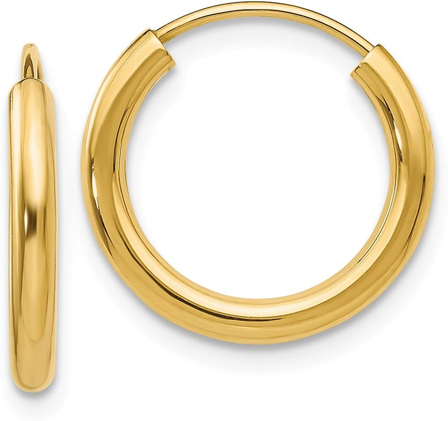 Beautiful Yellow gold 14K Yellowgold 14k Polished Round Endless 2mm Hoop Earrings