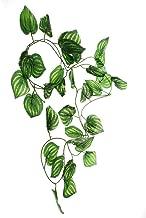 SPORER Artificial Plants for Reptiles, FMJI Green Aquarium/Terrarium Imitated Plastic Plants/Vines - Watermelon Leaves