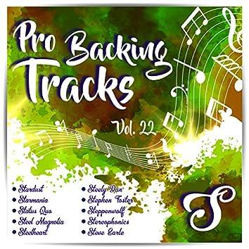 Pro Backing Tracks S, Vol.22