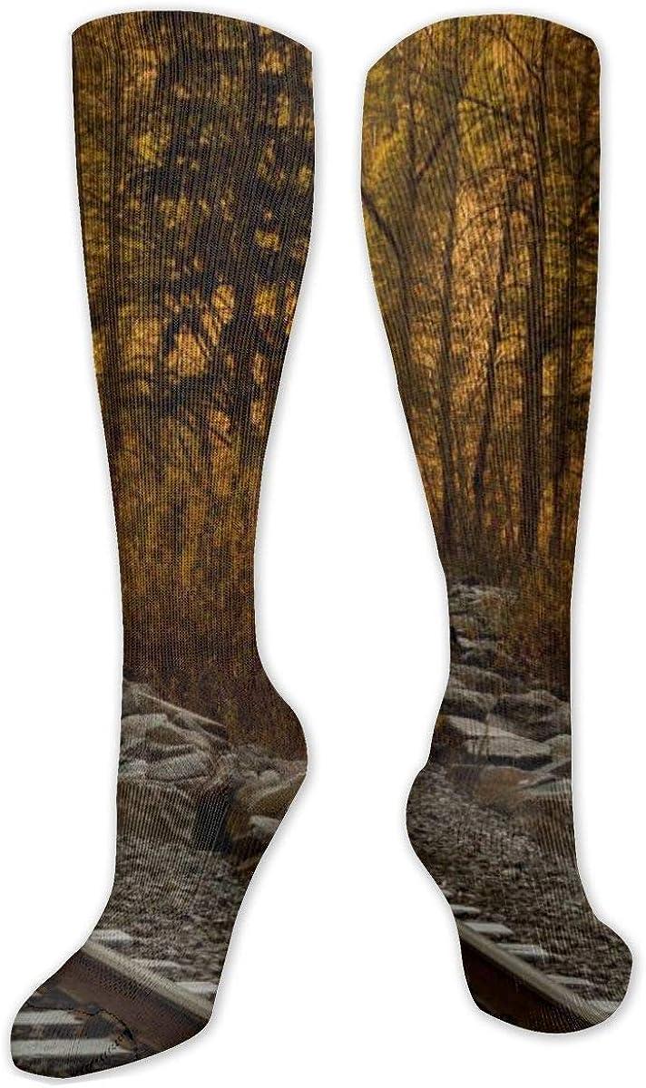 Train Rail Besides On Trees Knee High Socks Leg Warmer Dresses Long Boot Stockings For Womens Cosplay Daily Wear
