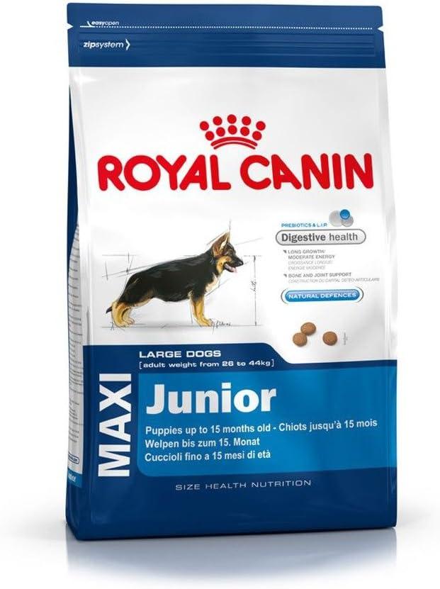 Royal Canin Maxi Junior - Pienso para cachorros razas grandes 10Kg