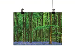Littletonhome Woodland Modern Oil Paintings Spring Sunshine in a Bluebell Wood Summer Dream Holiday Getaway Destination Canvas Wall Art 47