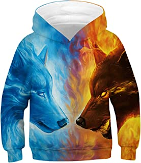 GLUDEAR Boys Girls 3D Print Graphic Sweatshirts Long Sleeve Pullover Hoodies with Pocket