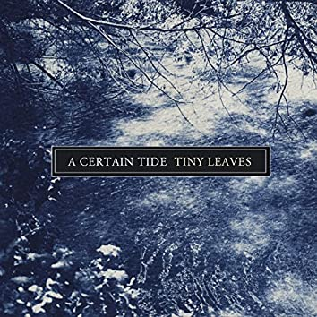 A Certain Tide