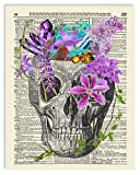 Skull, Skeleton Anatomy Vintage Dictionary Art Print, Modern Contemporary Wall Art for Home Decor, Boho Poster Sign 8x10 Inches, Unframed (Skull with Flowers & Crystals)