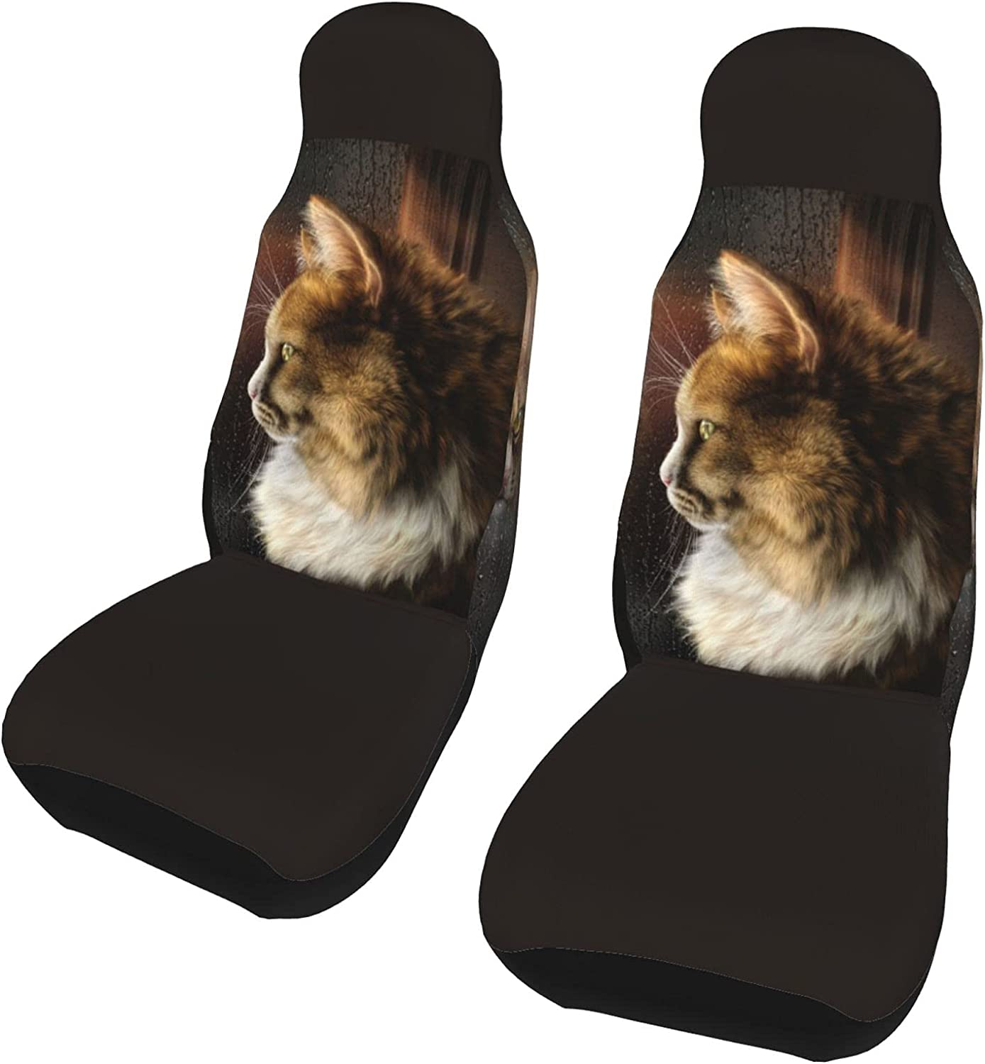 PictetW Cat in The Mirror On Day Nashville-Davidson Mall 5 ☆ very popular Seat Car Cover Rainy Universal