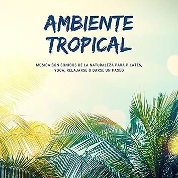 Ambiente Tropical: Música con Sonidos de la Naturaleza para Pilates, Yoga, Relajarse o Darse un Paseo