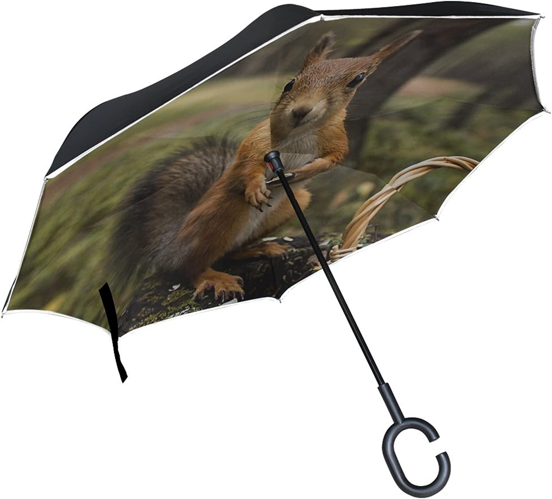Rh Studio Ingreened Umbrella Squirrel Grass Shopping Summer Greens Large Double Layer Outdoor Rain Sun Car Reversible Umbrella