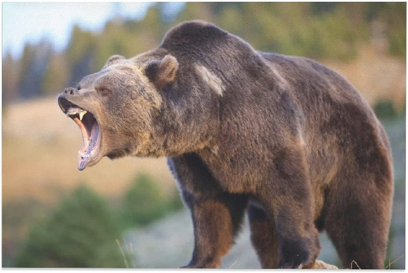LLZJ Over item handling Large special price !! Black Bear Grizzly Wild Brown Cub Animals and Big