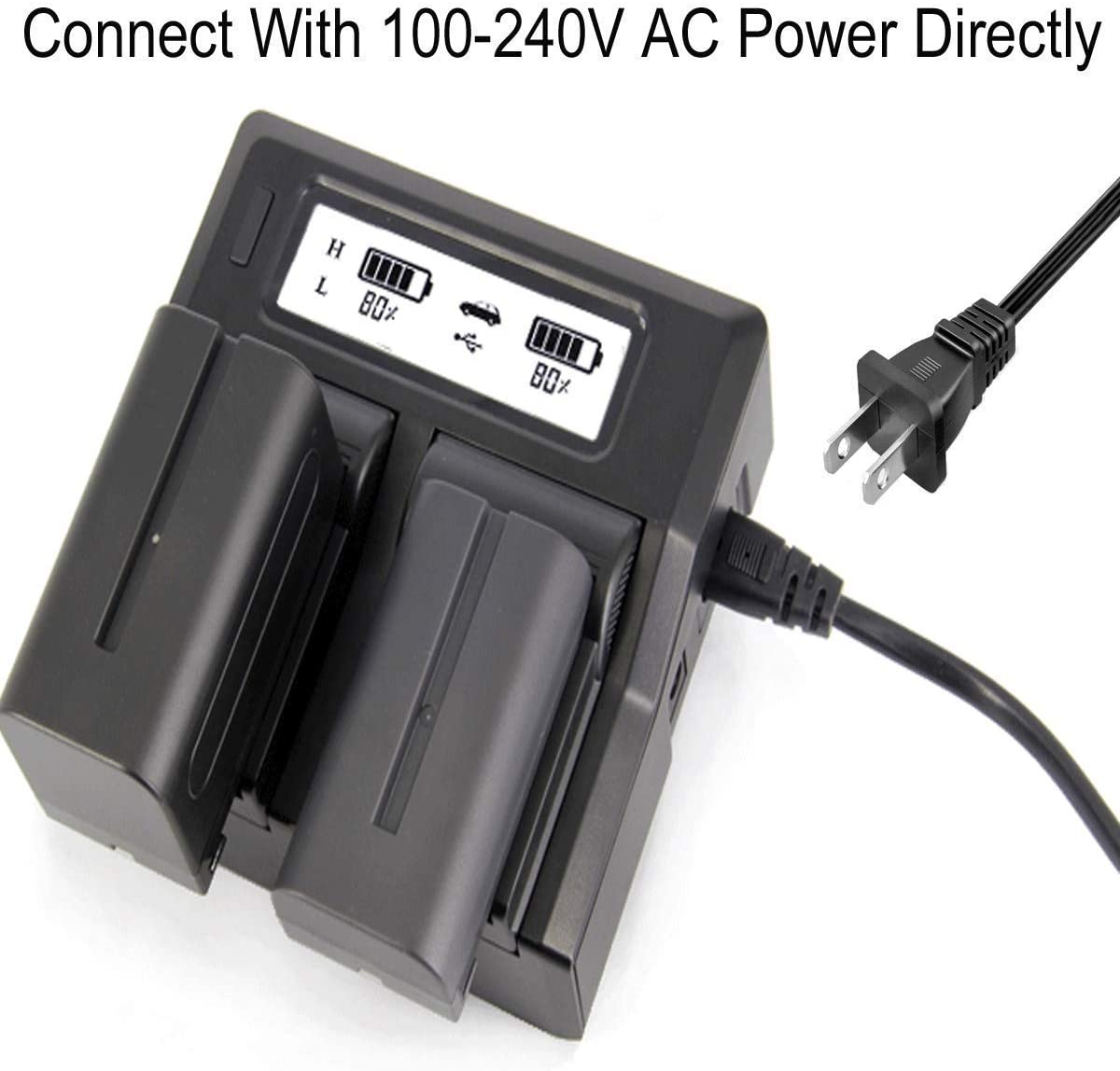 DCR-SX45 DCR-SX65 DCR-SX44 DCR-SX85 Handycam Camcorder Battery Charger for Sony DCR-SX34