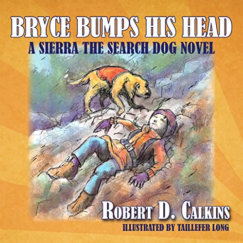 Bryce Bumps His Head audiobook cover art