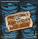 Meet the Aggrovators at Joe Gibbs - he Professionals