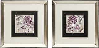 IMAX 82077-2 Brooke Floral Framed Art, Set of 2