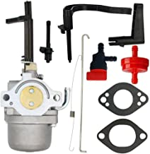 Best briggs and stratton generator carburetor Reviews