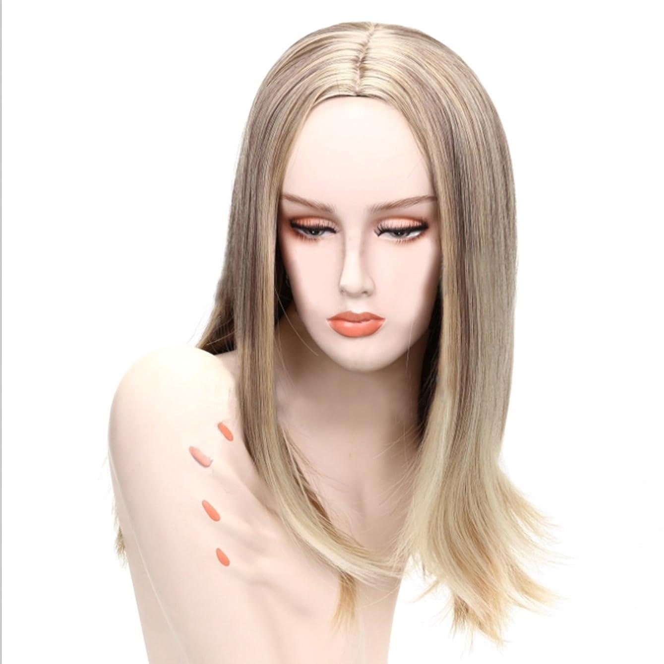現在積極的に空中Doyvanntgo 女性のためのフルヘッドストレートウィッグロングヘア耐熱化学繊維毛フラットバンまたはロングバンズウィッグナチュラルカラーゴールド28inch / 26inch (Color : Gold black)