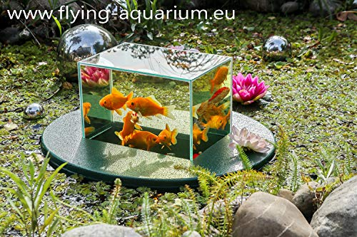 Flying-Aquarium-Oval©