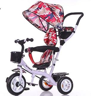 Amazon.es: carros bebe - Triciclos / Bicicletas, triciclos y ...
