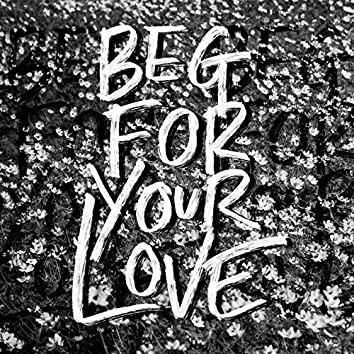 Beg for Your Love
