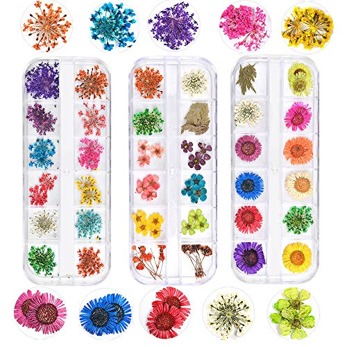 72PCS Nail Dried Flower 36 Colors Dried Flower Nail Art 3D Nail Applique Nail Art Accessory for Nail Decor (Starry Daisy and Five Flower)