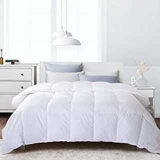 Edilly Luxurious Goose Down Comforter Queen Duvet Insert All Seasons Solid White Hypo-allergenic 700+ Fill Power 100% Cotton Shell Down Proof with Tabs (Queen, White)