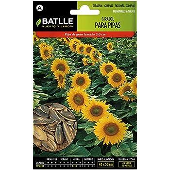Semillas Aromáticas - Lavanda officinalis - Batlle: Amazon.es: Jardín