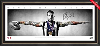 Sport Entertainment Products Dane Swan Mini Wings