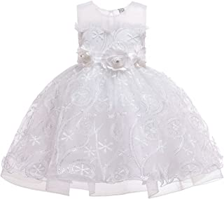 Zhhlaixing Girls Dress Glitter Flower Princess Dress Sleeveless Wedding Party Tull Dress Flower Lace Tulle Mesh Gown Infant Communion Pageant Dresses