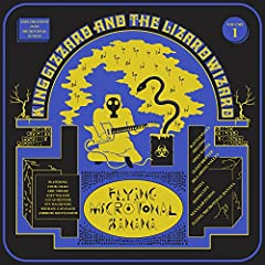 King Gizzard & The Lizard Wizard- Flying Microtonal Banana