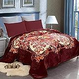 JML Fleece Blanket Queen(79'x91', 9 lbs) Heavy Korean Mink Style Fleece Blanket - Plush Fluffy Cozy Soft Warm 2 Ply Printed Raschel Bed Blankets for Winter Wedding