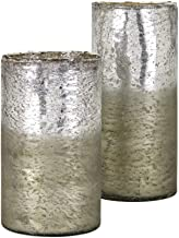 Imax 13862-2 Zuri Ombre Vases - Set of 2, Silver
