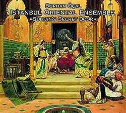 Sultan'S Secret Door