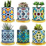 6 Pack Mandala Succulent Pot with Bamboo Trays, Ceramic Succulent Container Planter Pot for Small Plant