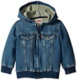 Levi's Baby Boys Hoodie, Waverly, 24 Months