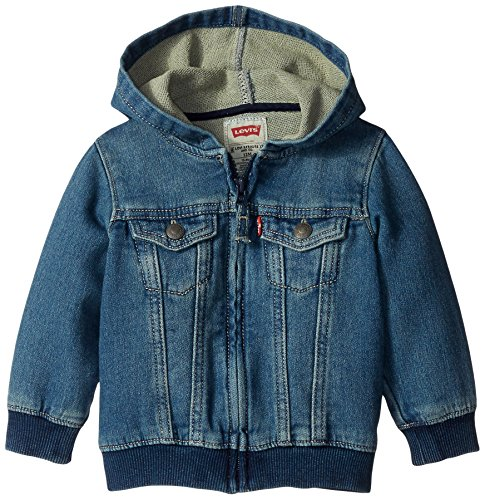 Levi's Baby Boys Hoodie, Waverly, 12 Months