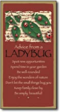 Tamengi Advice from A Ladybug Rustic Wood Wall Funny Inspirational Quotes Art Home Family Decoration Design Plank Plaque Sign 5
