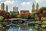 XYDXDY Rompecabezas para Adultos Rompecabezas de 3000 Piezas Nueva York Central Park Educativo Intelectual Descompresión Juguete Rompecabezas Divertido Juego Familiar para Adultos y niños