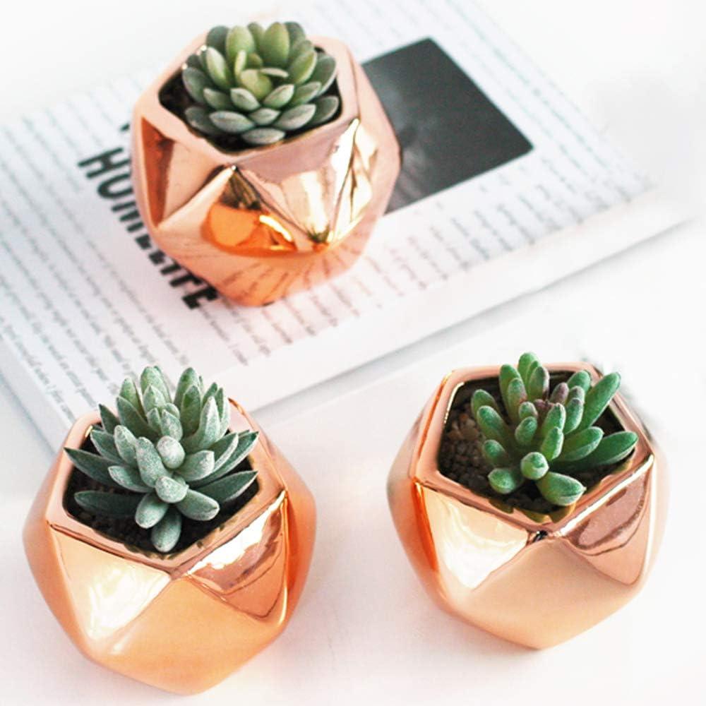 Mini Geometric Planter