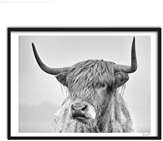 Finance Plan Clearance Sale Cow Portrait Poster Prints Wall Art Painting Pictures for Living Room Home Decor