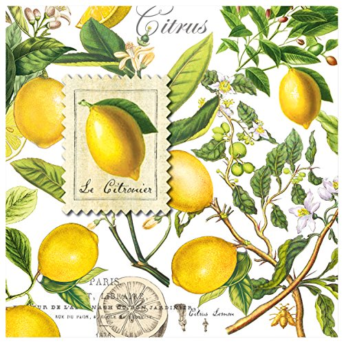 Michel Design Works Luncheon Napkins, Lemon Basil