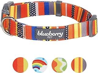Blueberry Pet Perfect Rainbow Dog Collar