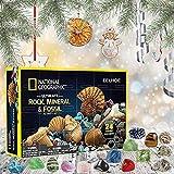 DXSS Confezione Regalo di Minerale di Natale, Calendario dellavvento con Collezione di minerali e Rocce, Giocattoli per leducazione scientifica Scatola per Ragazzi Ragazza cieca