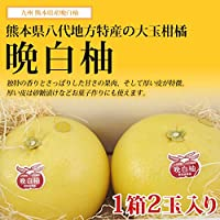 熊本産 晩白柚( バンペイユ ) 1箱 2玉入り 【 九州 熊本 みかん ばんぺいゆ ザボン 柑橘 御歳暮 ギフト 】