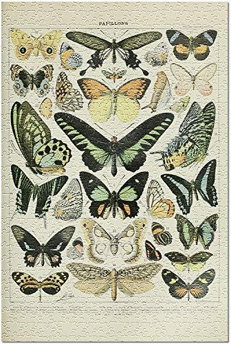 Mariposas - B - Ex libris vintage - Adolphe Millot Artwork 82106...
